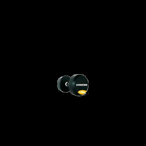 Dumbbell (kg)