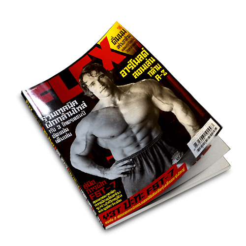 Flex Magazine V.6