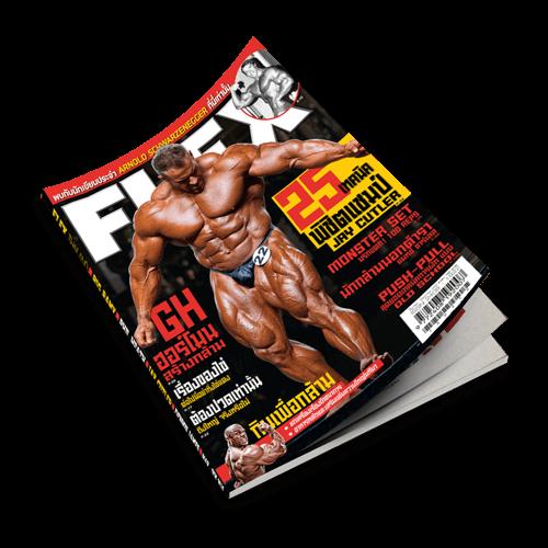 Flex Magazine V.2