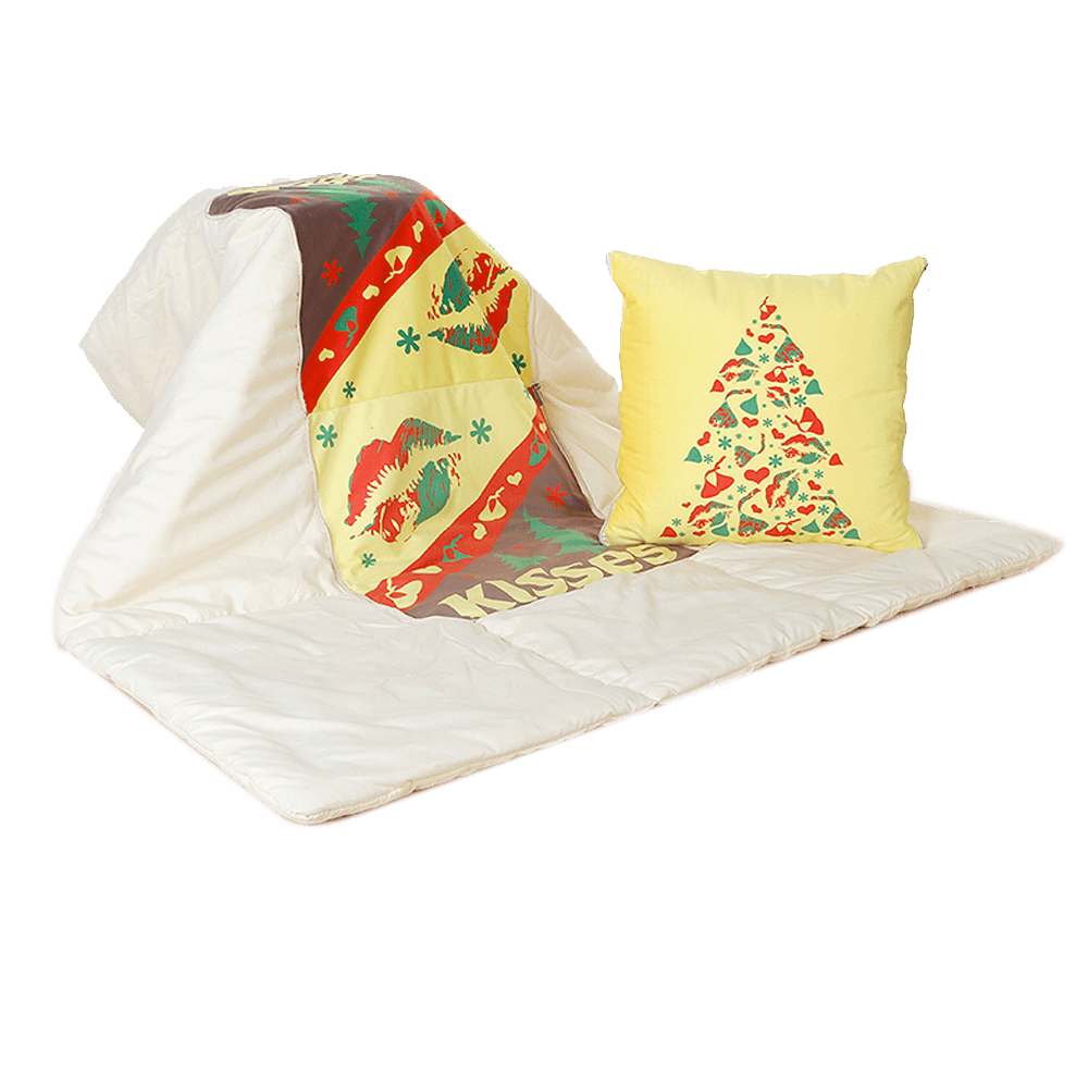 Pillow with Blanket 2 in 1
