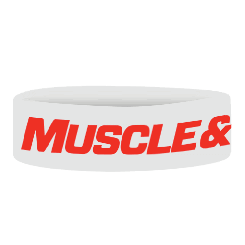 Wristbands Muscle & Fitness - White