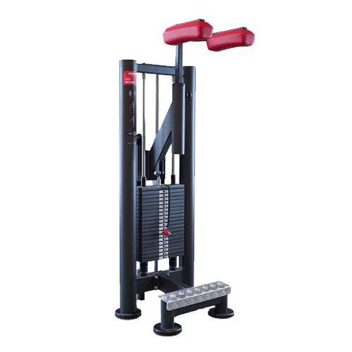 1SC089 SEC CALF MACHINE