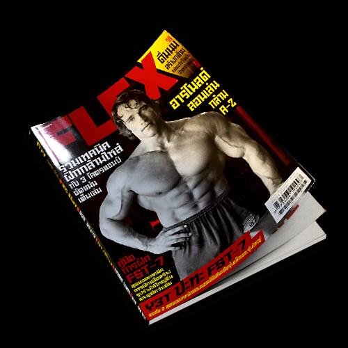 Flex Magazine V.6 -