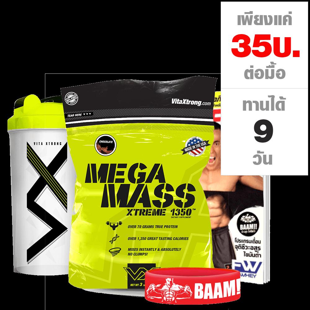VX MEGA MASS XS